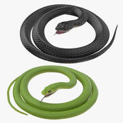 Black and Green Snakes Rigged 3d model