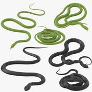 Poses de serpents noirs et verts 3d model