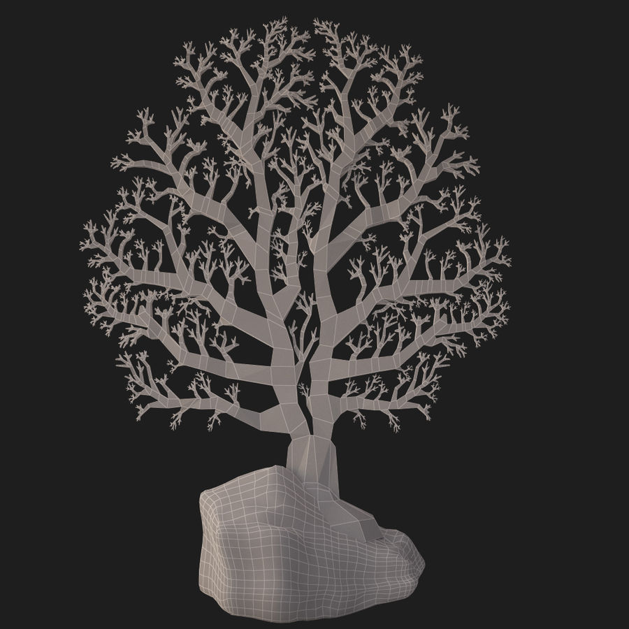 fan coral royalty-free 3d model - Preview no. 18