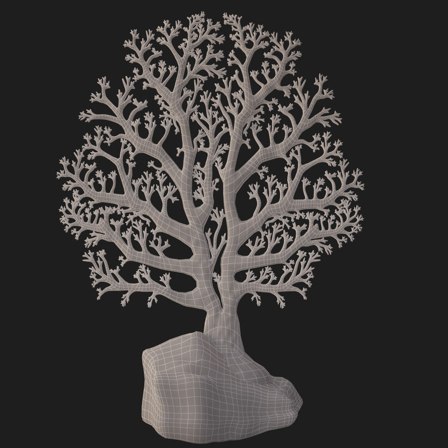 fan coral royalty-free 3d model - Preview no. 19