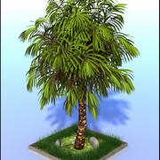 Grande palmeira 3d model