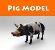 model świni 3d model
