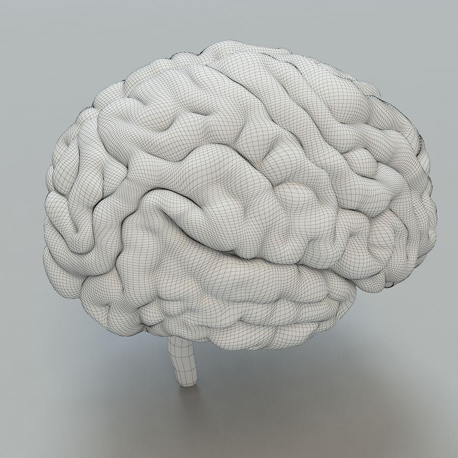 Человеческий мозг royalty-free 3d model - Preview no. 7