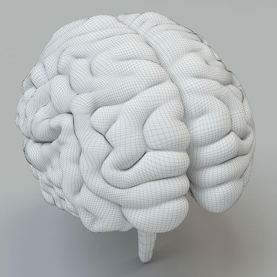 Человеческий мозг royalty-free 3d model - Preview no. 8