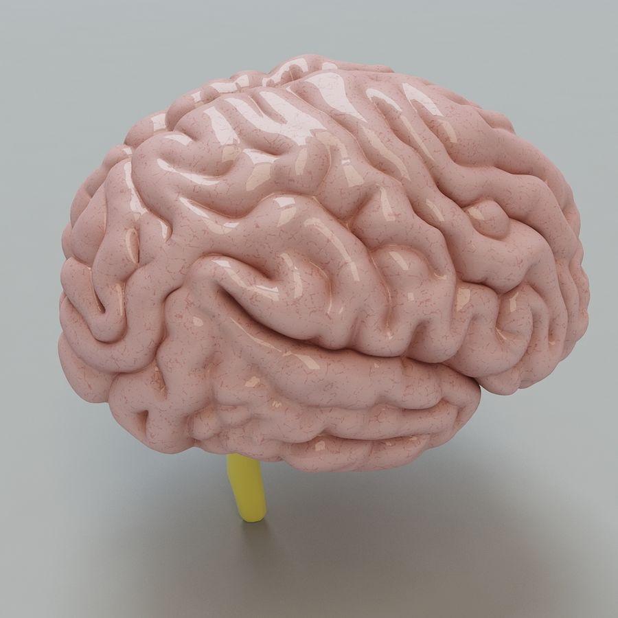 Человеческий мозг royalty-free 3d model - Preview no. 3