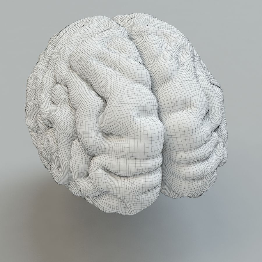 Человеческий мозг royalty-free 3d model - Preview no. 9