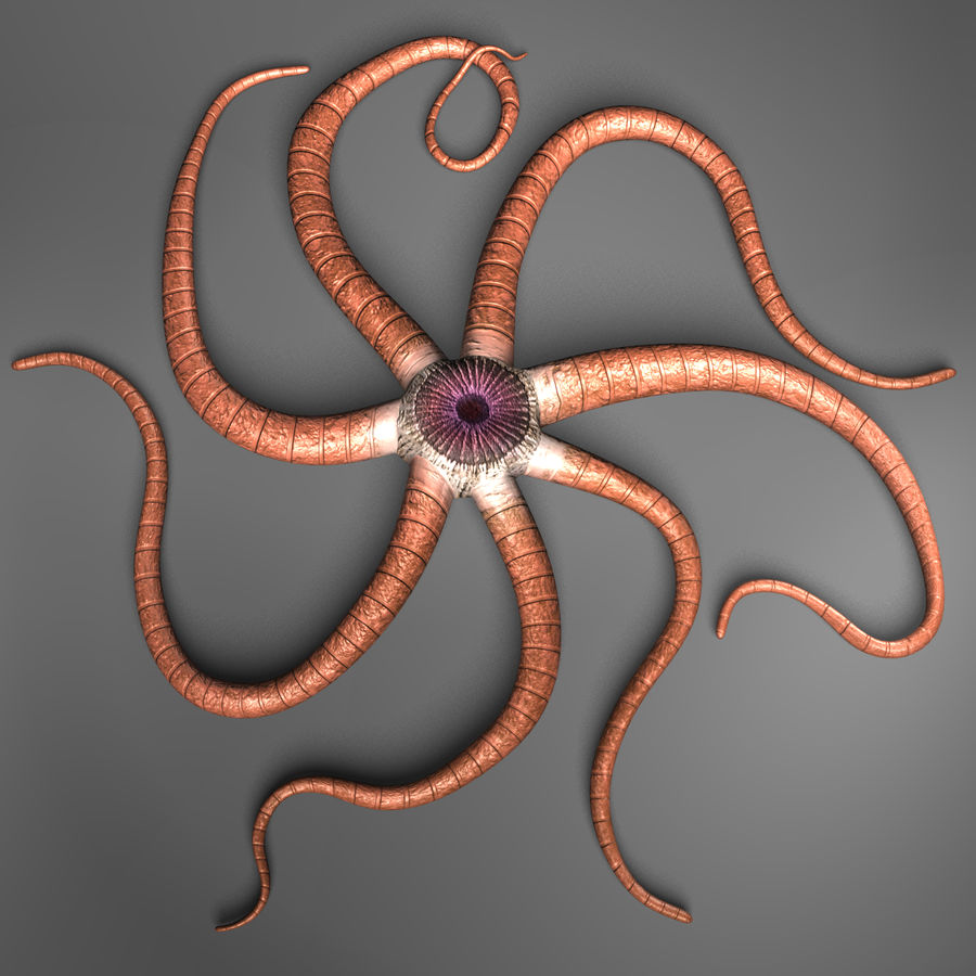 Starfish Creature royalty-free 3d model - Preview no. 1