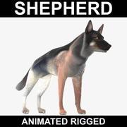 德国牧羊犬(动画索具) 3d model