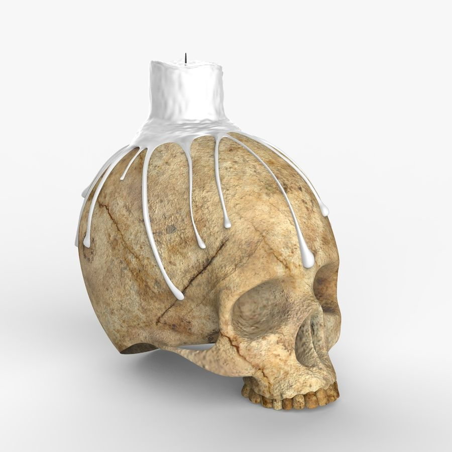 Skull Candle Holder royalty-free 3d model - Preview no. 5