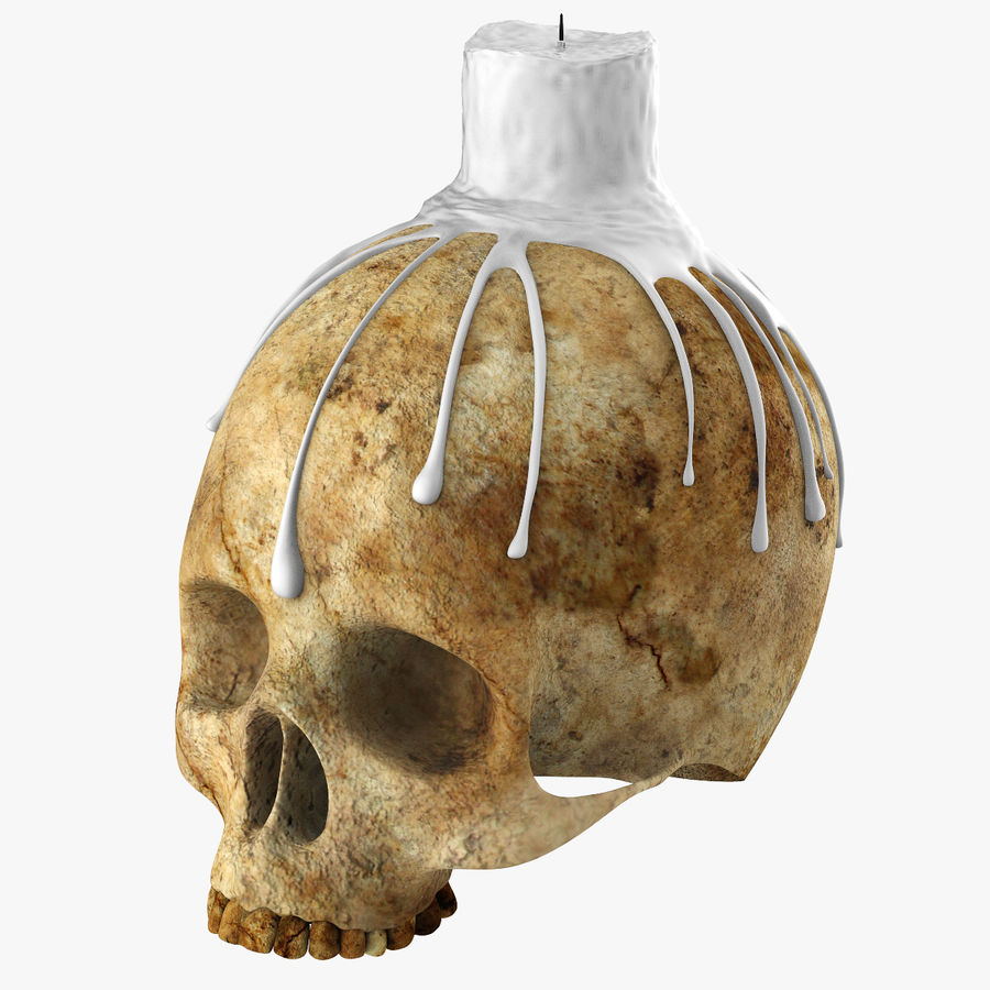 Skull Candle Holder royalty-free 3d model - Preview no. 1