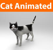 cat animated 3d model