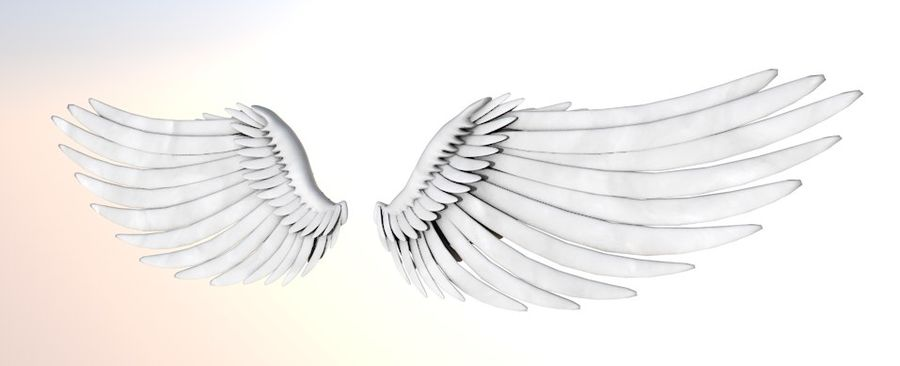 wings royalty-free 3d model - Preview no. 3