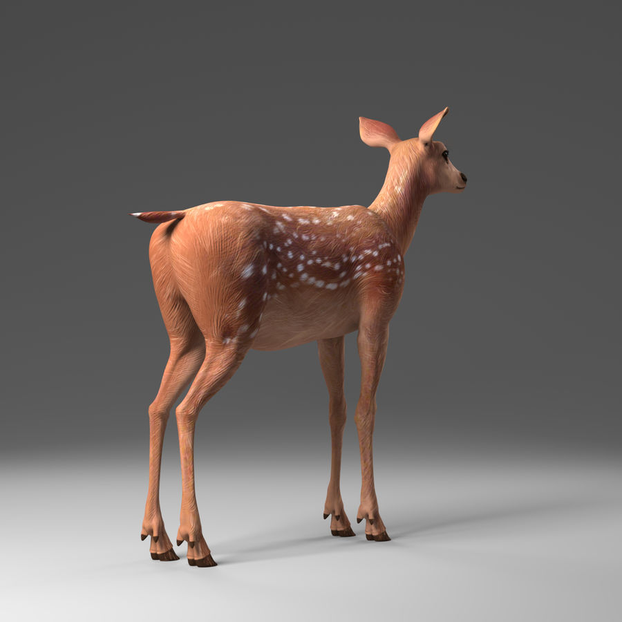 Hirsche royalty-free 3d model - Preview no. 4