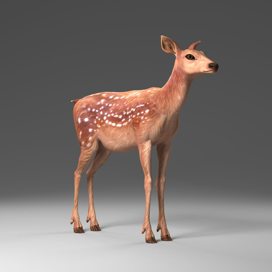 Hirsche royalty-free 3d model - Preview no. 1