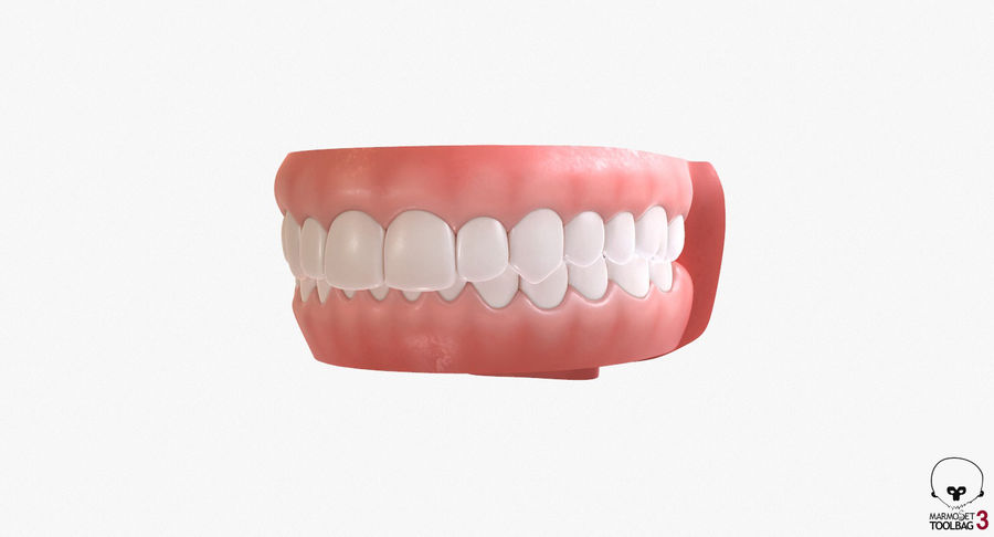Teeth royalty-free 3d model - Preview no. 19