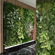 Zielona ściana 3d model