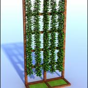 Ściana rośliny Liana 3d model