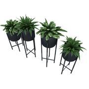 Rośliny 1 3d model