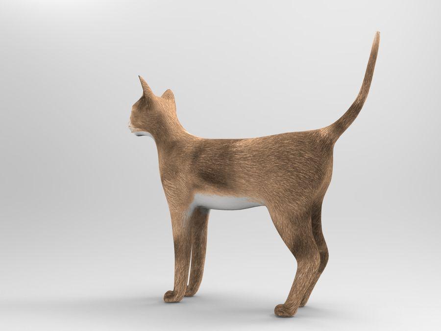 猫模型 royalty-free 3d model - Preview no. 5