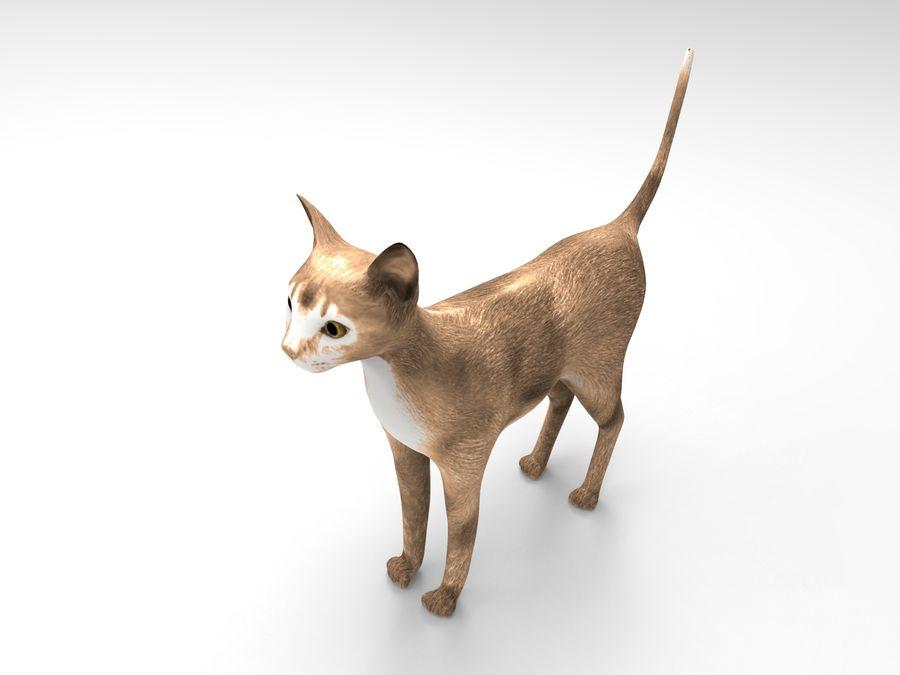 猫模型 royalty-free 3d model - Preview no. 7