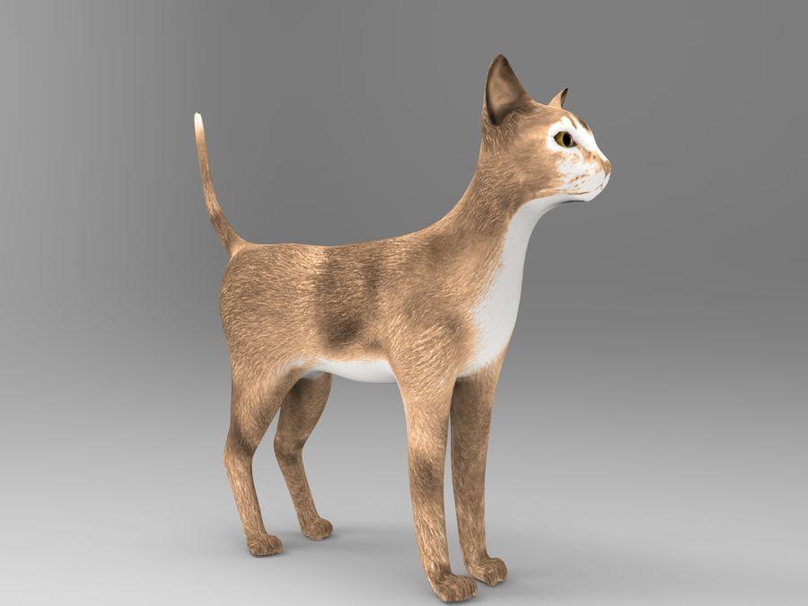猫模型 royalty-free 3d model - Preview no. 9