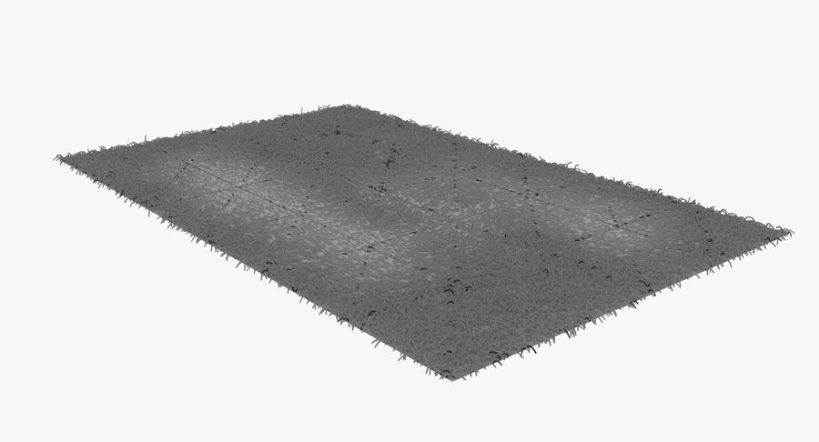 Carpet Rug Fur royalty-free 3d model - Preview no. 6