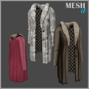 Manteau de fourrure 3d model