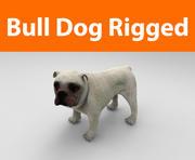 bulldog rigged 3d model