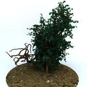 树木1 3d model
