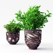 Two Plants in Modern Metall Pots 3d model