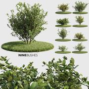 Nine Bushes (+GrowFX) 3d model