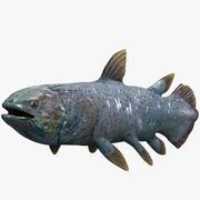 coelacanth 3d model