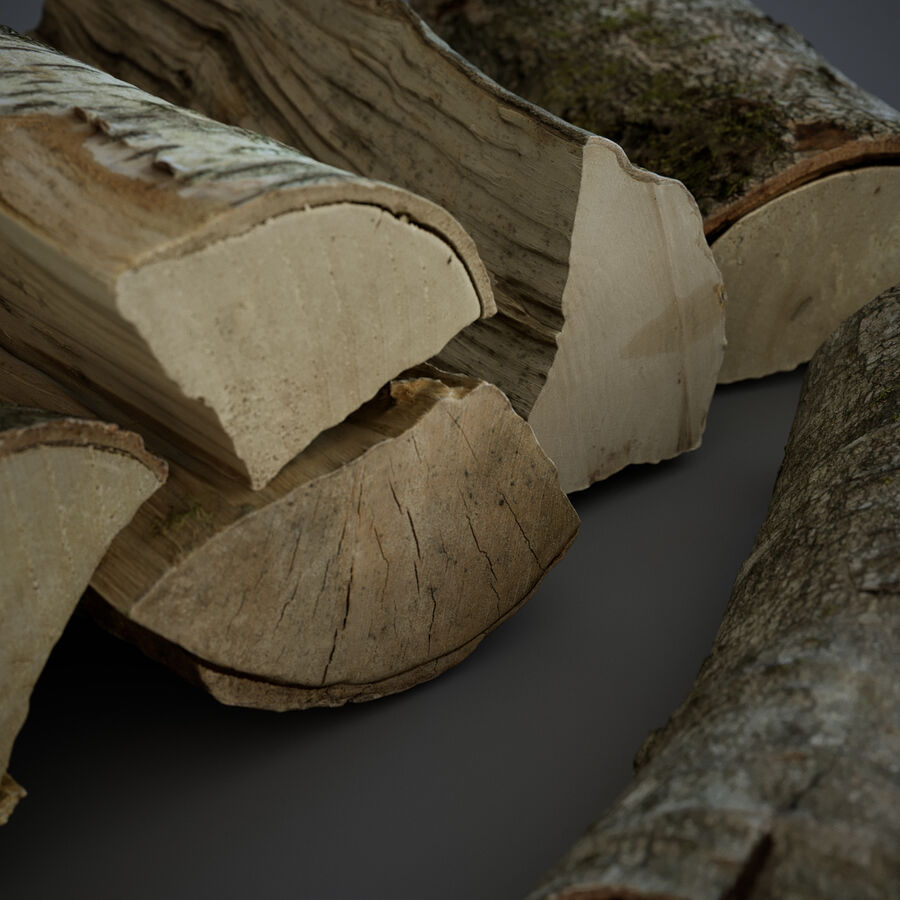 Wood Logs royalty-free 3d model - Preview no. 9