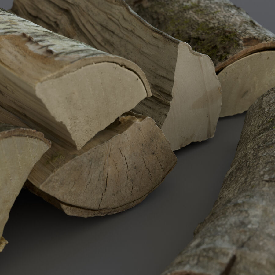 Wood Logs royalty-free 3d model - Preview no. 10