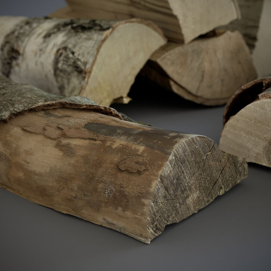 Wood Logs royalty-free 3d model - Preview no. 7