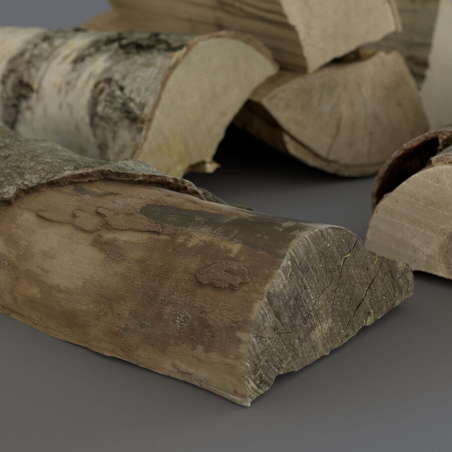 Wood Logs royalty-free 3d model - Preview no. 8