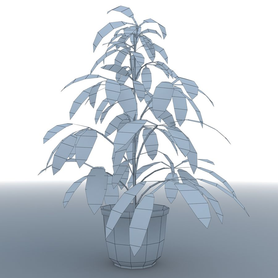 Plant in bloempot royalty-free 3d model - Preview no. 8