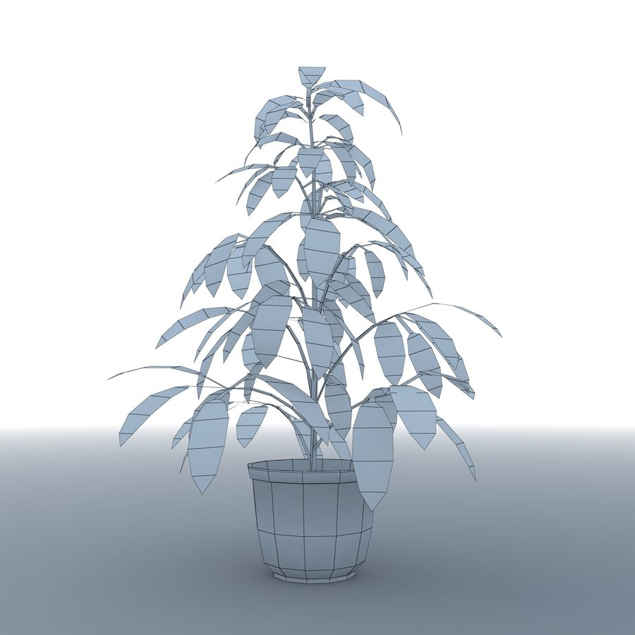 Plant in bloempot royalty-free 3d model - Preview no. 9