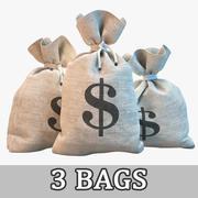 Worki na pieniądze 3d model