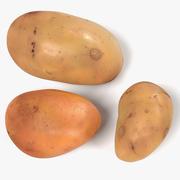 감자들 3d model