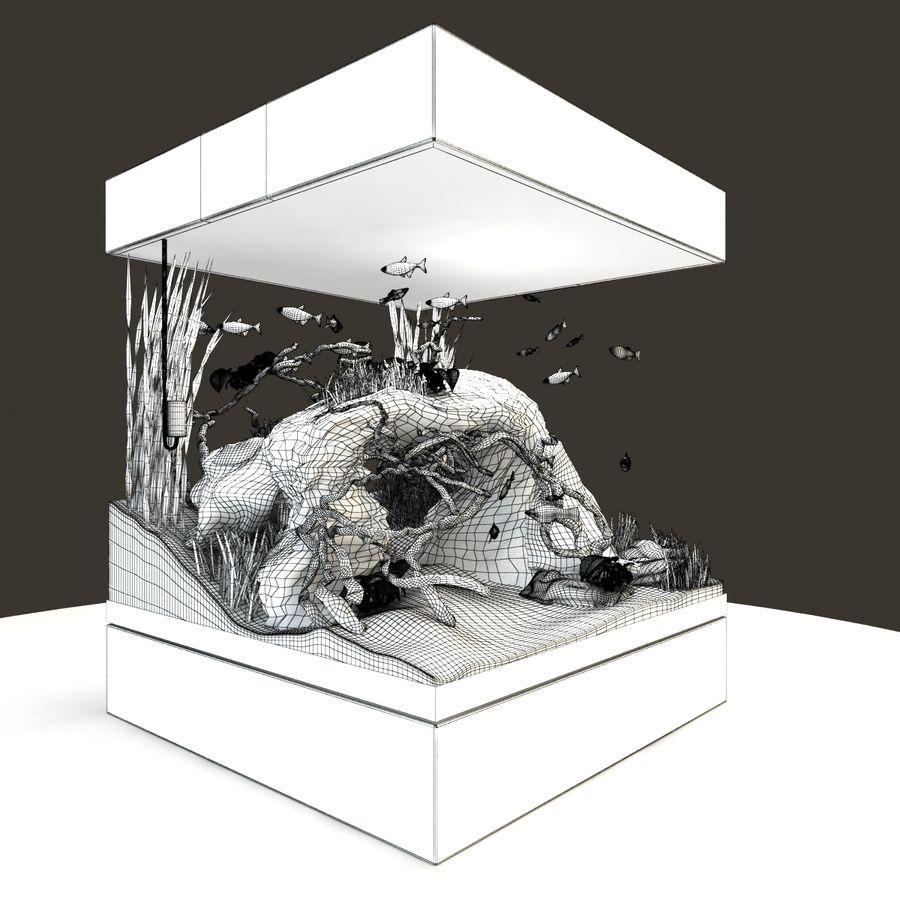Naturalne akwarium royalty-free 3d model - Preview no. 11