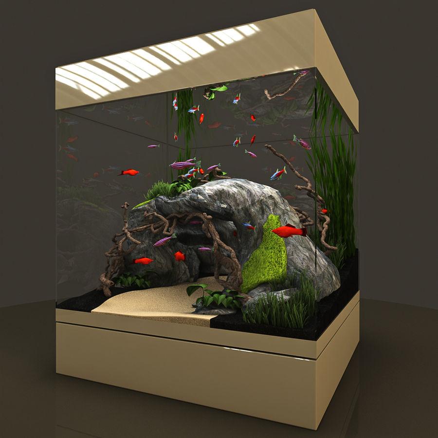 Naturalne akwarium royalty-free 3d model - Preview no. 3