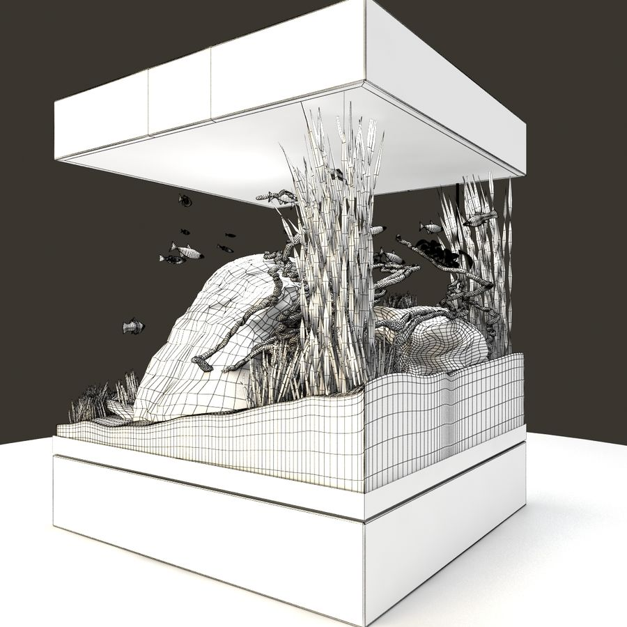 Naturalne akwarium royalty-free 3d model - Preview no. 15