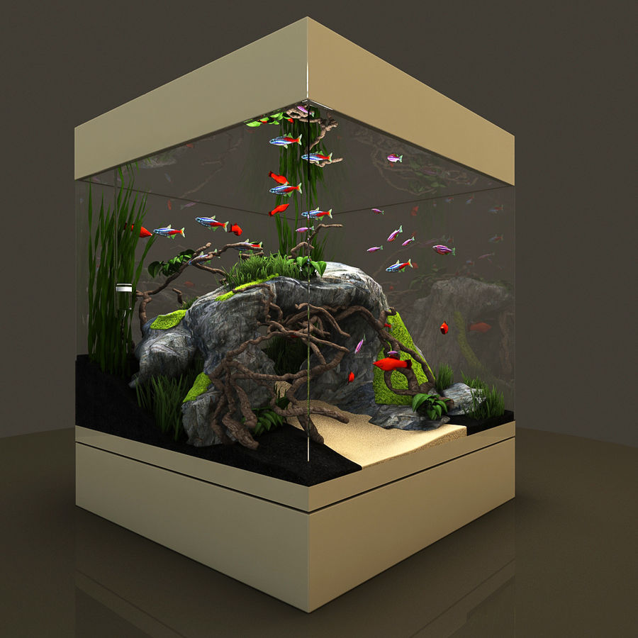 Naturalne akwarium royalty-free 3d model - Preview no. 2