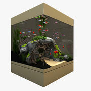 Naturligt akvarium 3d model