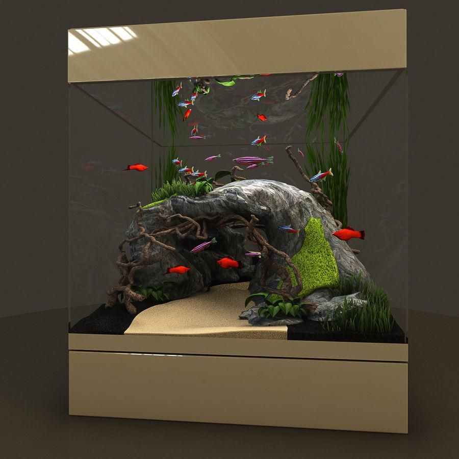 Naturalne akwarium royalty-free 3d model - Preview no. 4