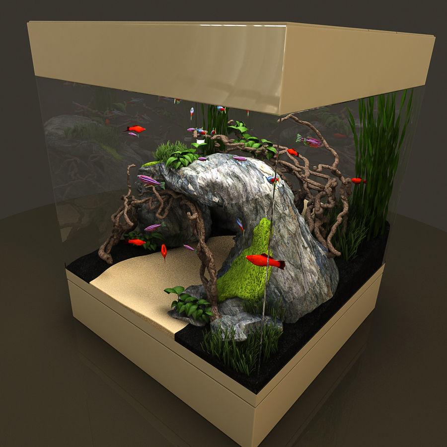 Naturalne akwarium royalty-free 3d model - Preview no. 7