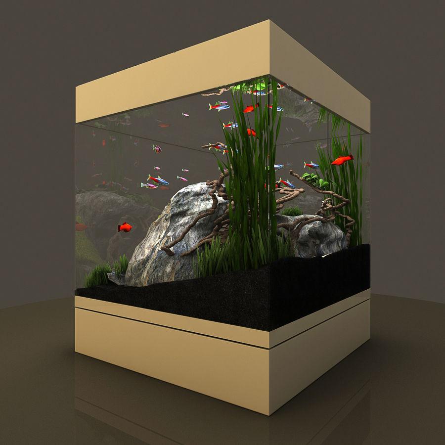 Naturalne akwarium royalty-free 3d model - Preview no. 8