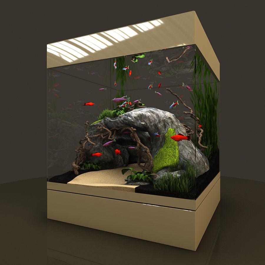 Naturalne akwarium royalty-free 3d model - Preview no. 6