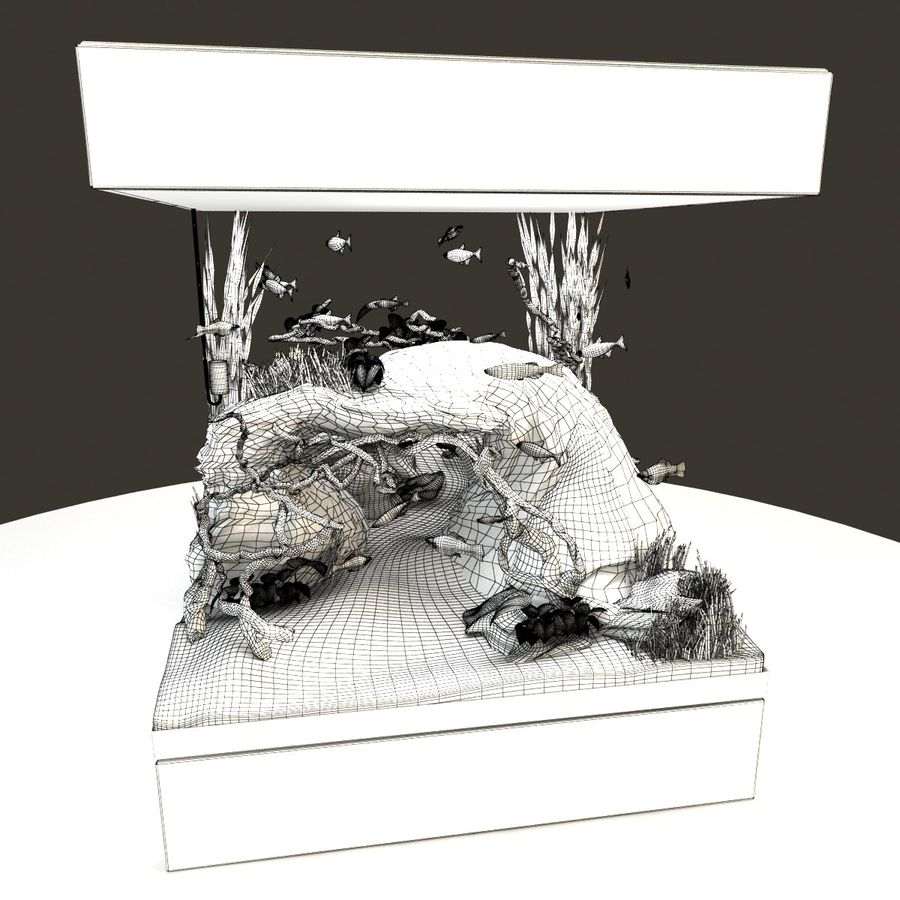 Naturalne akwarium royalty-free 3d model - Preview no. 13